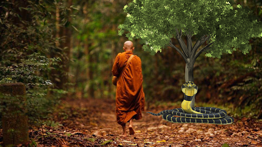 Advice of Buddhas devotee to the angry snake : Do not be so kind that crosses of end of everything